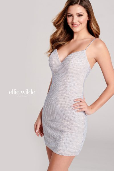 Ellie Wilde EW22002S Sleeveless Prom Dresses